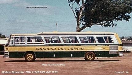 Diplomata FNM11000 - Princesa dos campos