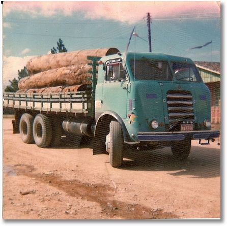 13 - fnm 62 (bonanza) em 1976 antes do acidente, carga de toras vinda de S