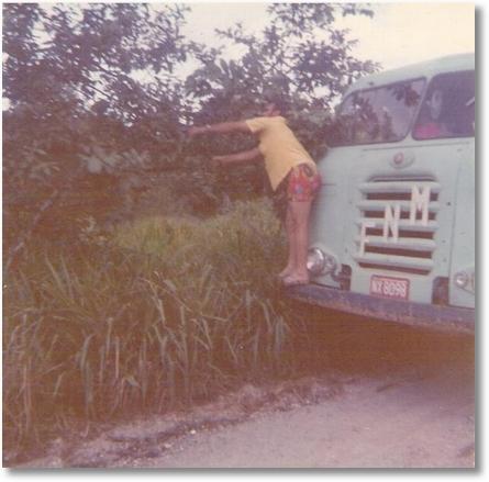 Lucas Trevisan, apanhando Goiaba 1972