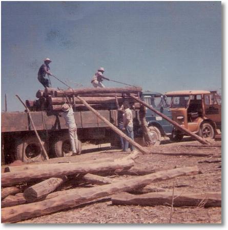 FNM 180 Azul 75 - Aureo Federoski e FNM 180 Amarelo 75 José Pilotto em Guarani de Goias em 1980