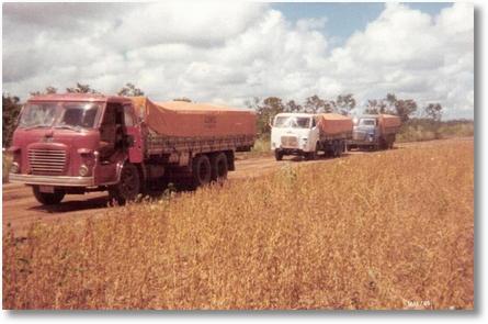 Colheita de soja no Mato Grosso - Carlos, Reinaldo, Anadson e Pedro