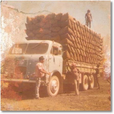 FNM 65 - Valdyvio Kerscher (Divo) Em 1976, carga de carvão de Jaiba-MG para BH