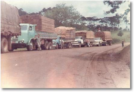 FNM 66 - Antonio Maoski (Tinindo) Epóca de muita madeira no Paraná