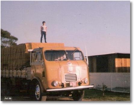 FNM - Proprietário Irmãos Valaski, motorista Juarez Alves Boges, em cima da carga Vitor Alves Borges Jr