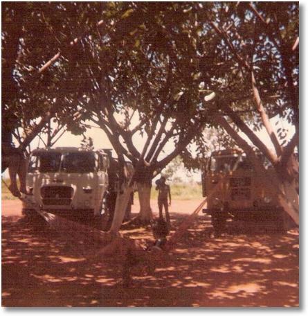 FNM 180-73 - Prop. Jo+úo Luiz Camargo e FNM 63 Prop. Ad+úo Mecanico em 1979 de GO para Brasilia
