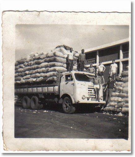 FNM carregado de algodão
