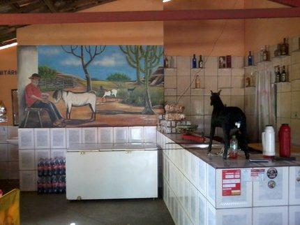 Restaurante Zé do Bode com suas comidas tipicas (1)